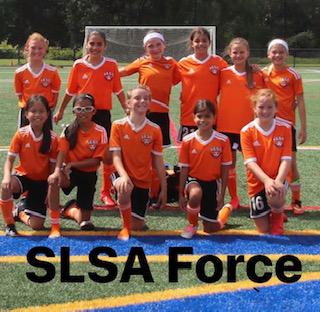 SLSA Force 10